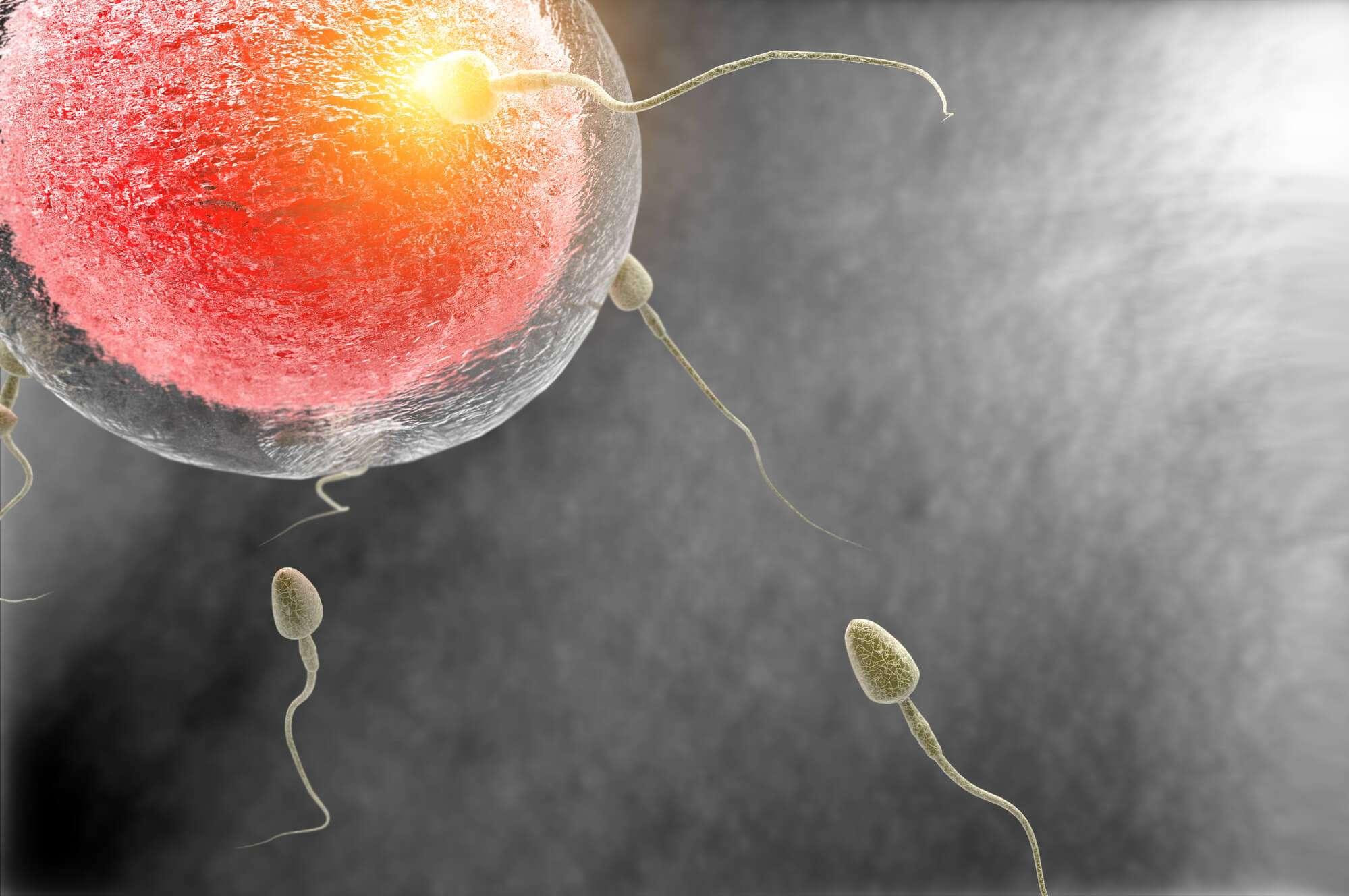 Conheça 7 tipos de tratamentos para engravidar disponíveis no Brasil