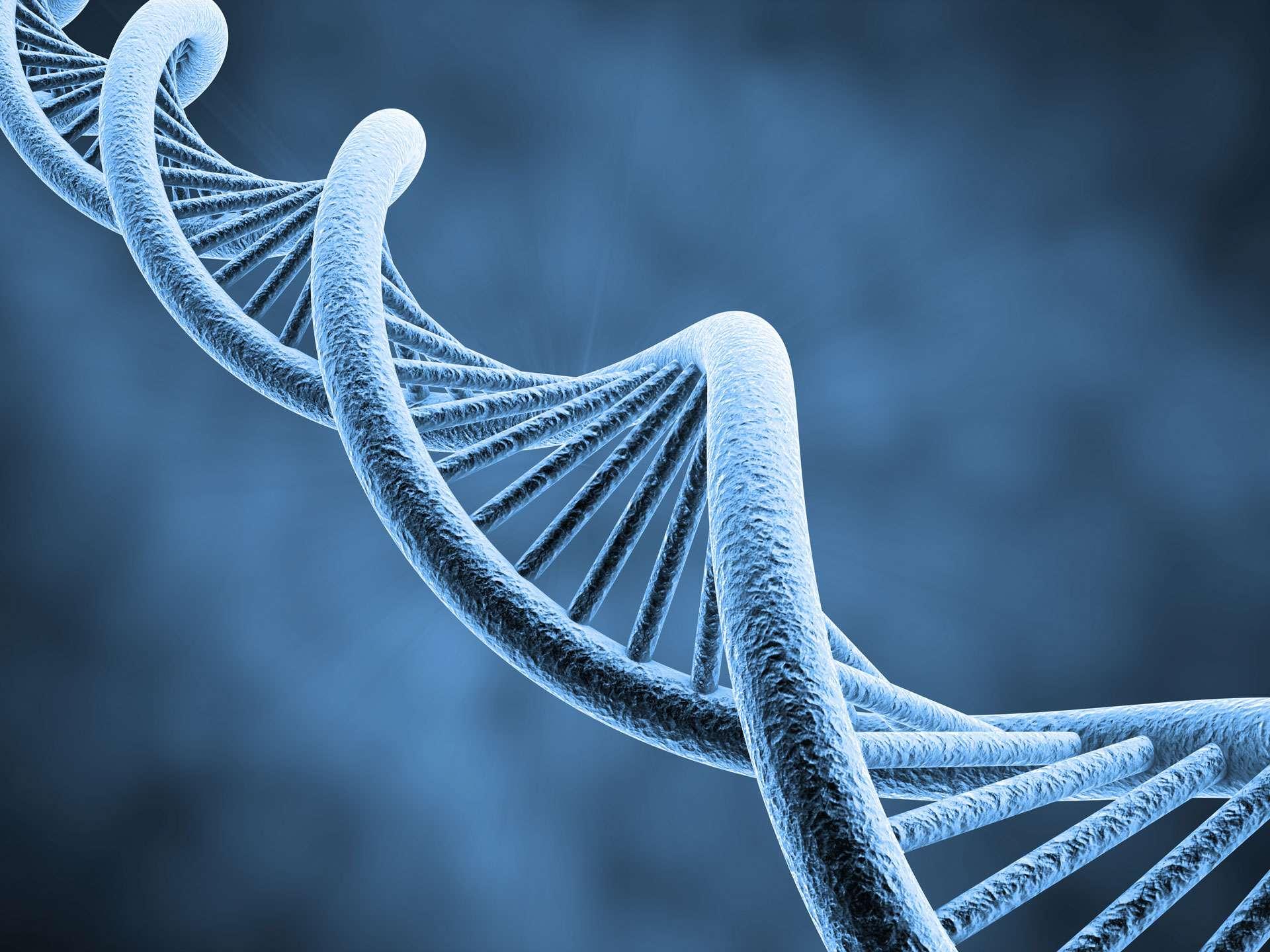Entenda sobre a fragmentação do DNA espermático