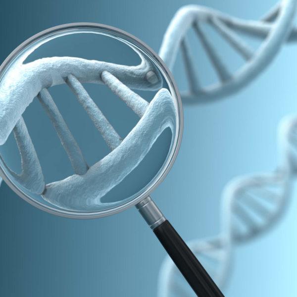 diagnóstico genético pré-implantacional