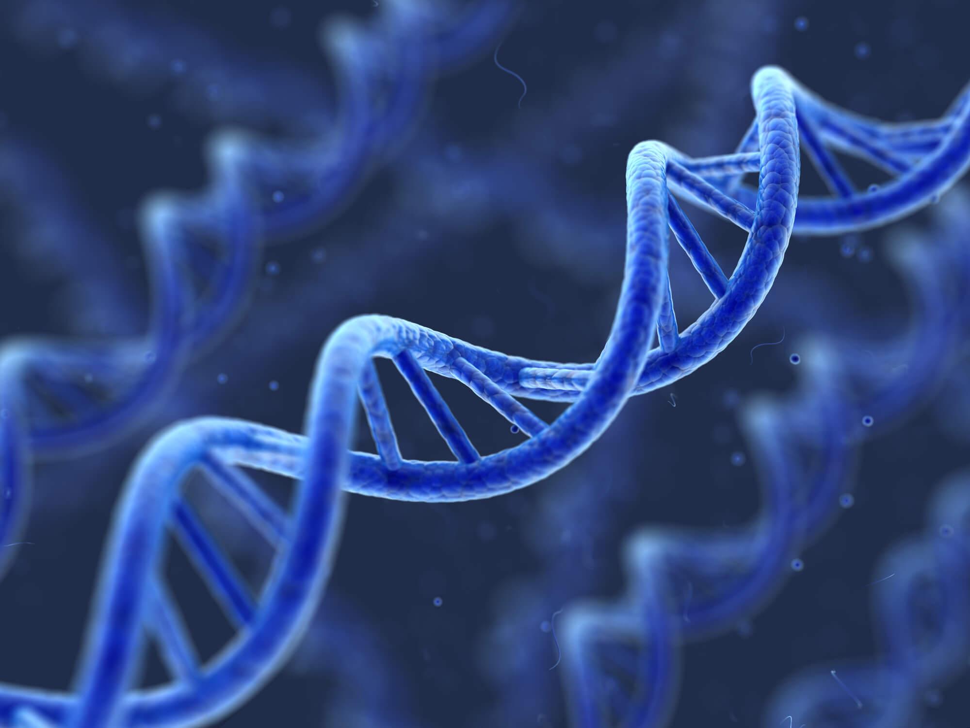 Epigenética: entenda como funciona e sua relação com a recepção de óvulos